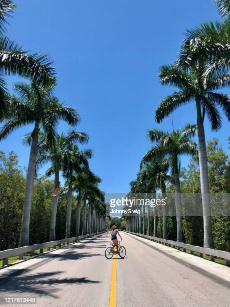 girl cycling through palm treelined avenue in florida - vero beach stock pictures, royalty-free photos & images