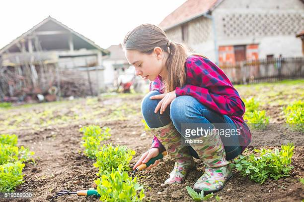 girl digging in garden - only teenage girls stock pictures, royalty-free photos & images