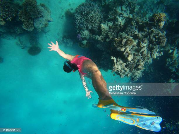 girl dive in red sea with fish and corals, underwater shoot, hurghada, egypt. - egypt stock pictures, royalty-free photos & images