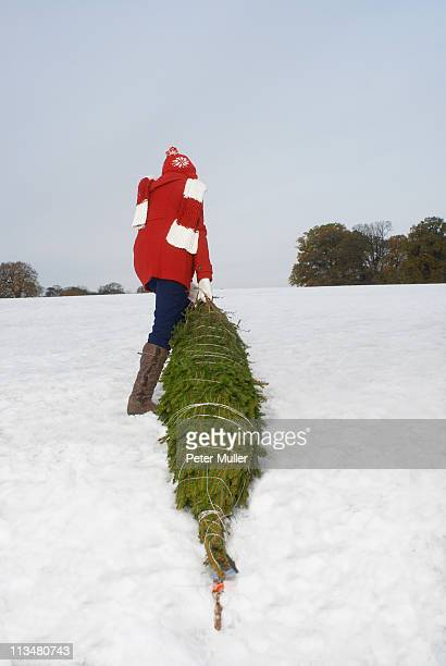 Girl dragging christmas tree in snow