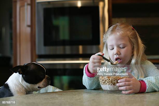 girl eating cereal with her dog - dog eats out girl stock pictures, royalty-free photos & images