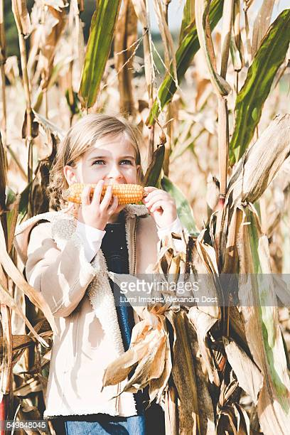 girl eating corn on the cob - alexandra dost stock-fotos und bilder