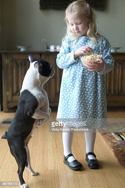 girl eating pop corn with dog looking at her - dog eats out girl stock pictures, royalty-free photos & images