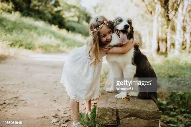 girl embracing border collie in nature - day 4 imagens e fotografias de stock