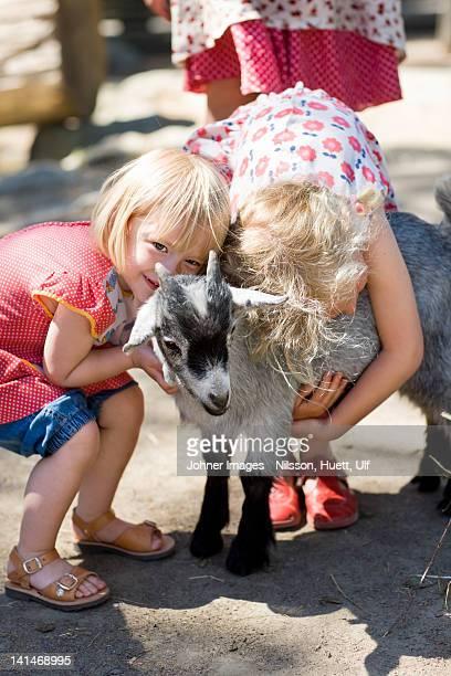Girl embracing goat at zoo