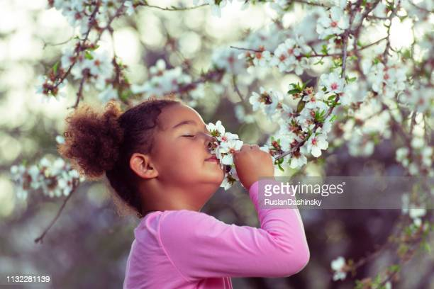 girl enjoying blooming aroma. - smelling stock pictures, royalty-free photos & images