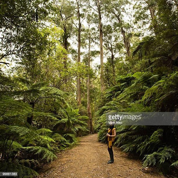 Girl enjoying the temperate rainforest