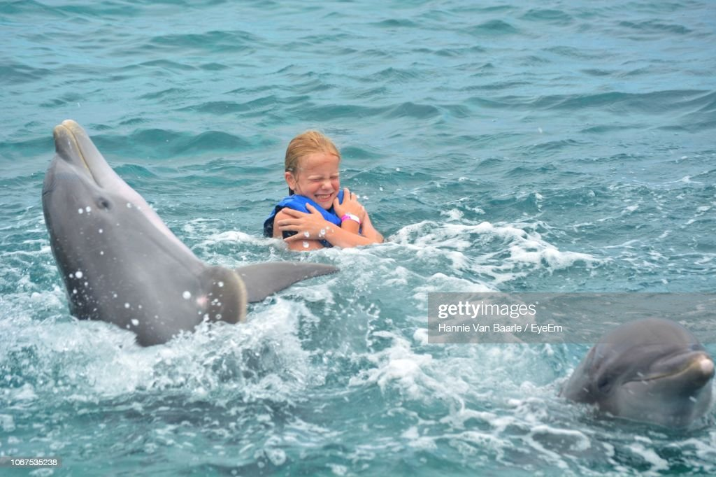 Girl Enjoying With Dolphins In Sea : Stock Photo