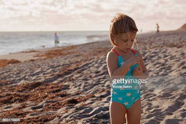girl examining stick on beach, blowing rocks preserve, jupiter island, florida, usa - jupiter island stock photos and pictures