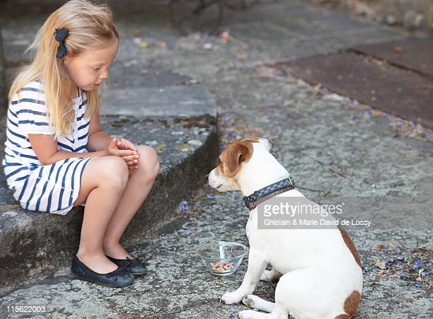 girl feeding a dog - dog eats out girl stock photos and pictures