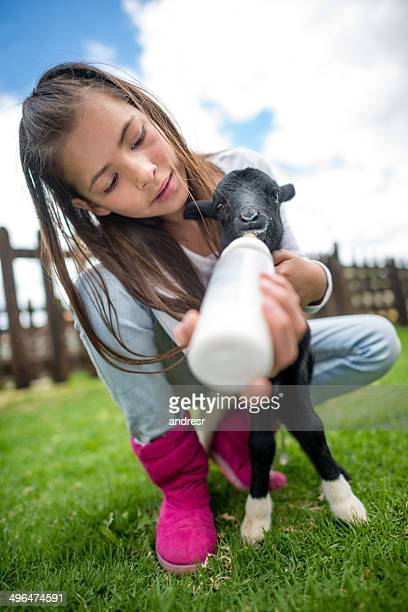 Girl feeding a goat