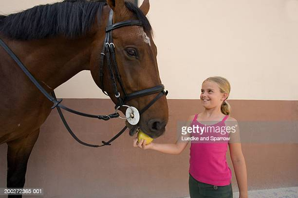 girl (8-10) feeding apple to  horse, smiling - little girls giving head stock photos and pictures