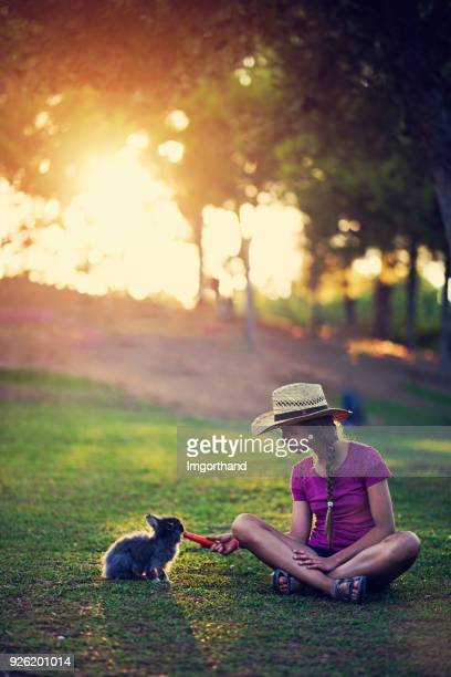 girl feeding rabbit in the park - imgorthand stock photos and pictures