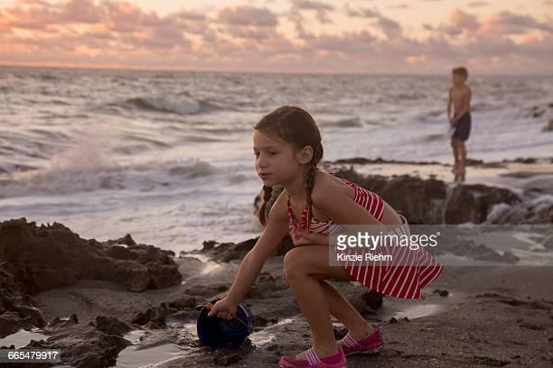 girl filling toy bucket on beach at sunrise, blowing rocks preserve, jupiter island, florida, usa - blowing rocks preserve stock photos and pictures