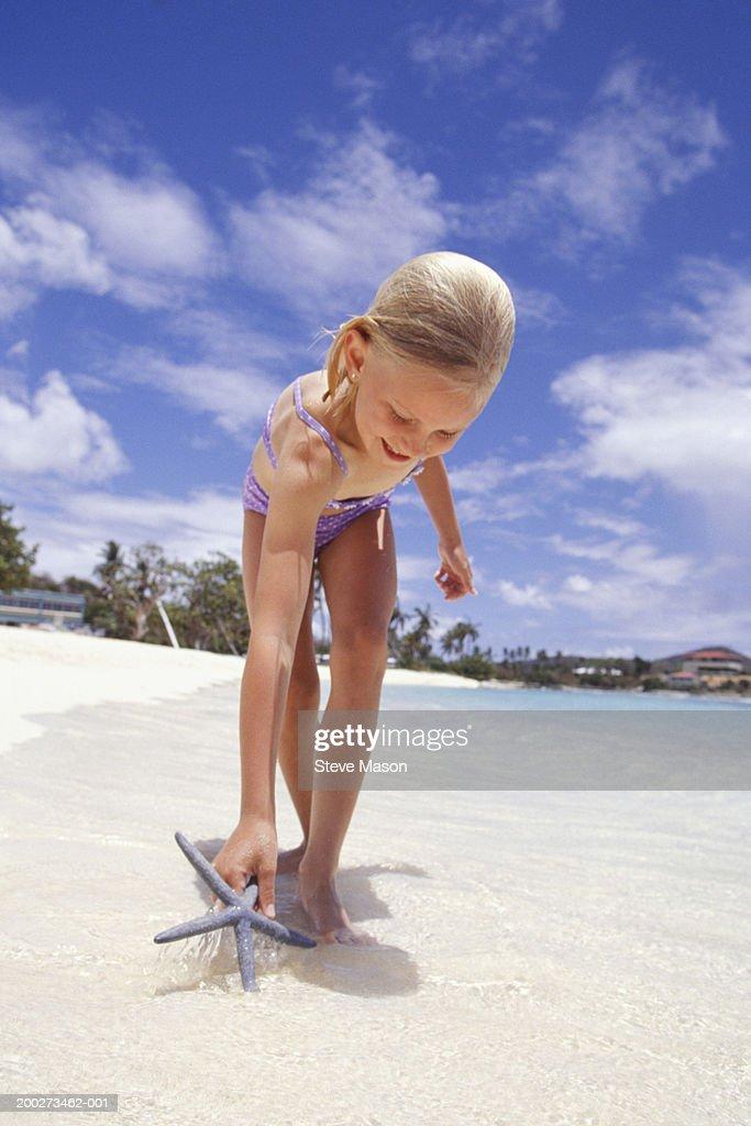 Girl (6-7) finding starfish on beach : Stock Photo