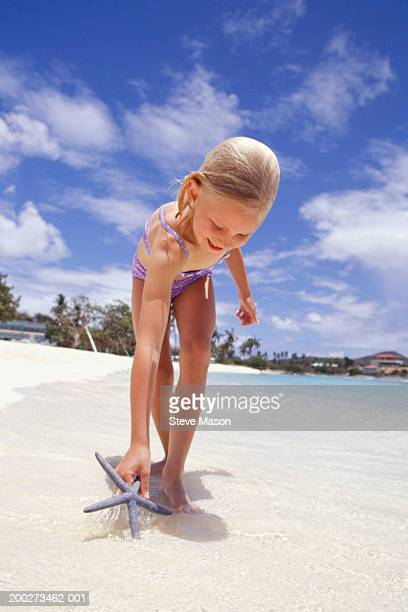 girl (6-7) finding starfish on beach - dead girl stock pictures, royalty-free photos & images