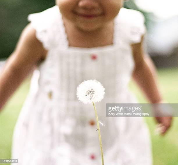 Girl finds a dandelion