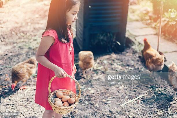 Mädchen treffen Eiern vom coop