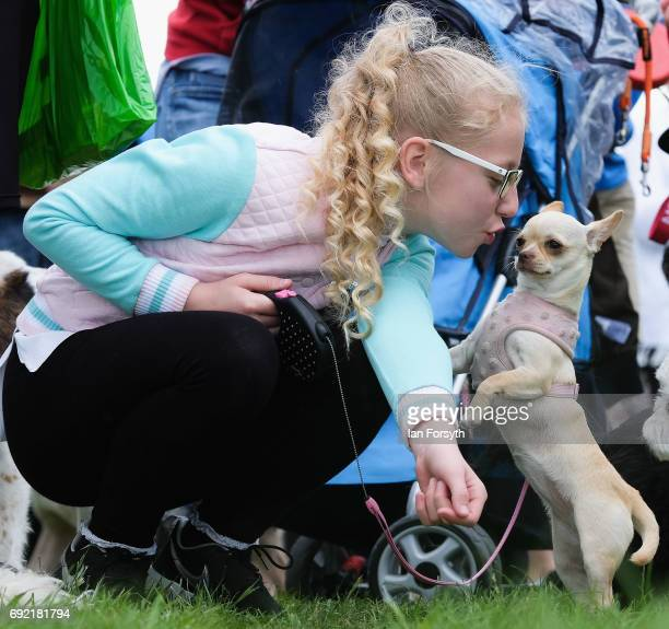 Girl gives her dog a kiss as they take part in the Great North Dog Walk on June 4, 2017 in South Shields, England. Founded in 1990 by former teacher...