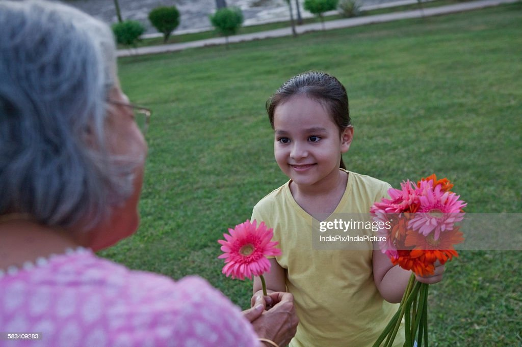 Girl giving her grandmother a flower : Stock Photo