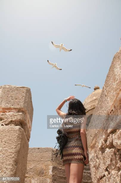 Girl glancing at flying seagull in blue sky
