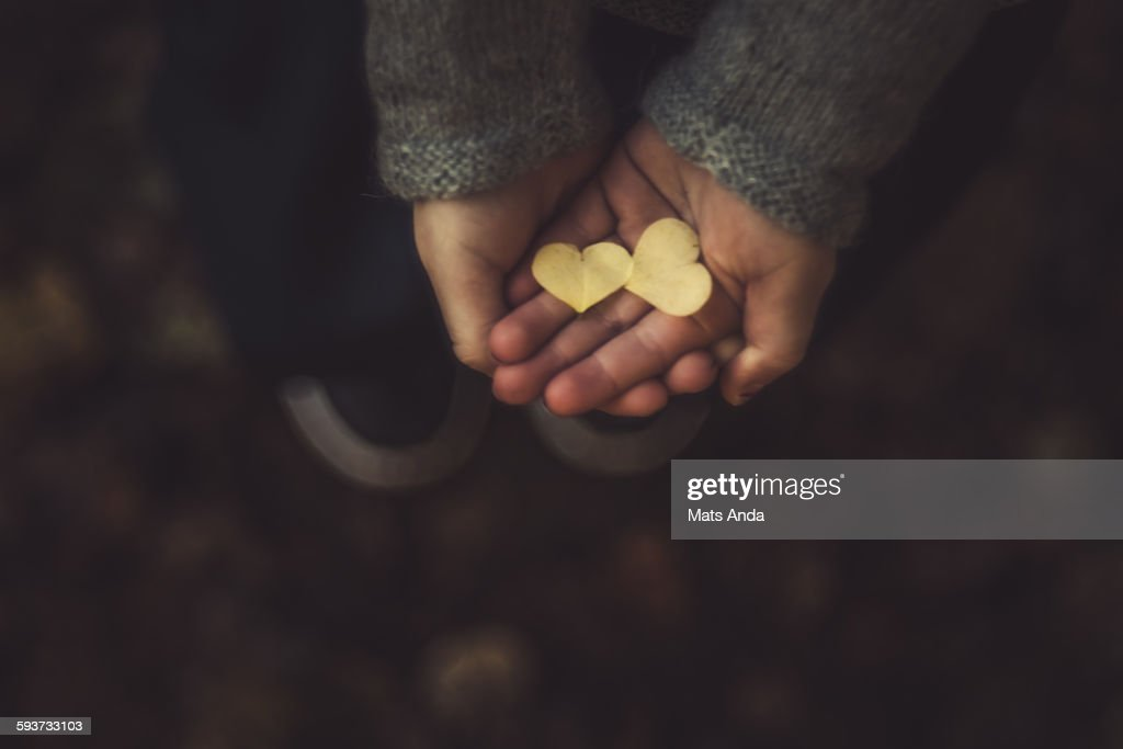 Girl hands in foreest : Stock Photo