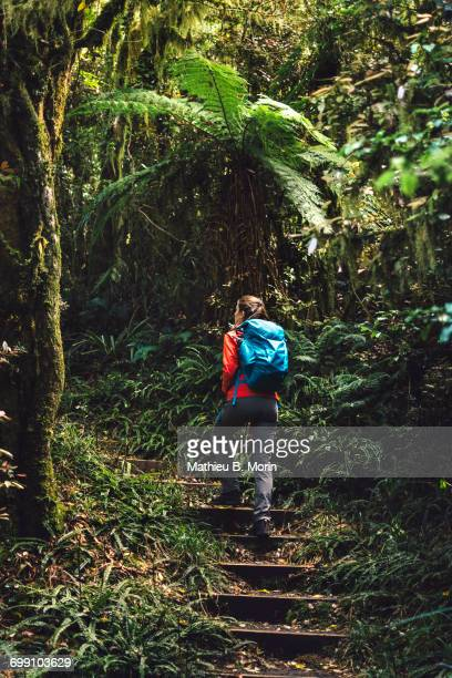 Girl hiking in a dense forest