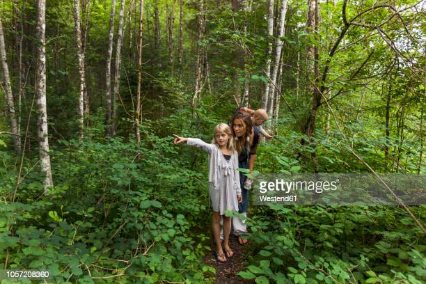 girl hiking in the woods showing the way to mother and little brother - lane sisters stock photos and pictures