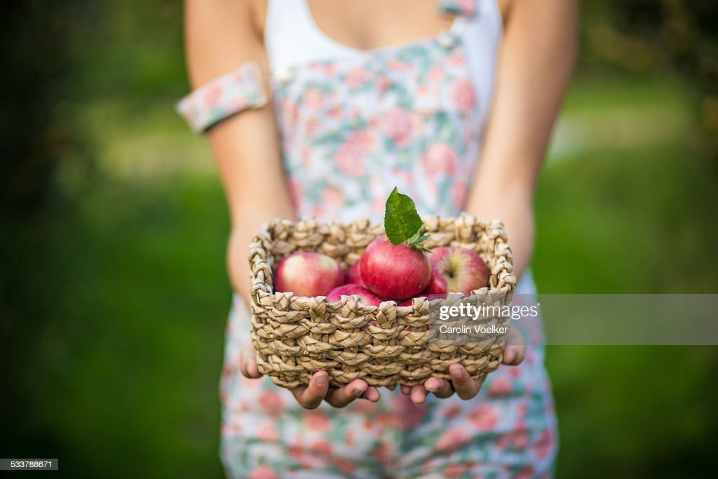 Girl holding a basket of apples : Foto stock