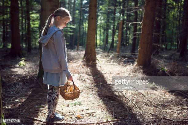girl (10-11) holding a basket of wild mushrooms in a forest - 10 11 jahre stock-fotos und bilder