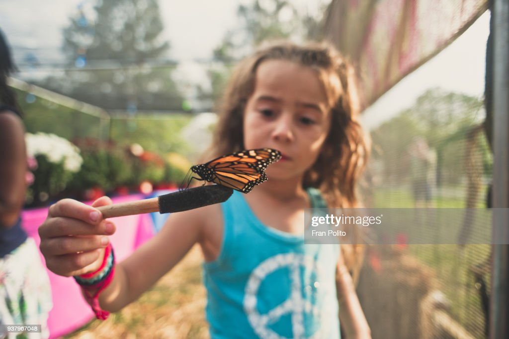 A girl holding a butterfly. : Stock Photo