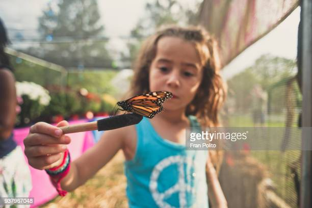 a girl holding a butterfly. - field trip stock pictures, royalty-free photos & images