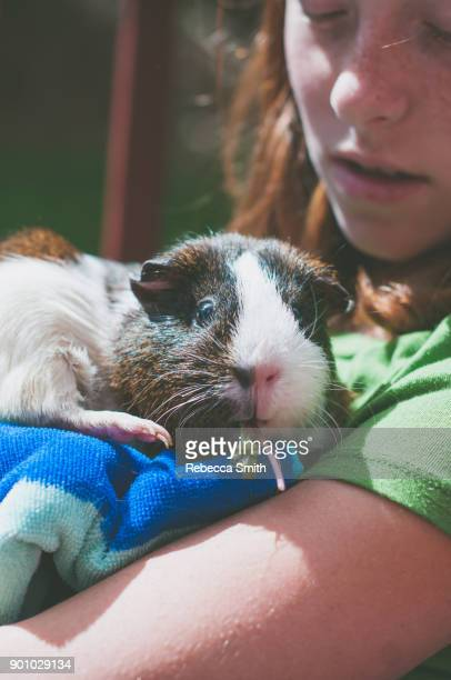 Girl holding a guinea pig