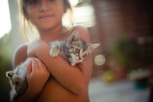 Girl holding a kitten and looking at the camera - gettyimageskorea