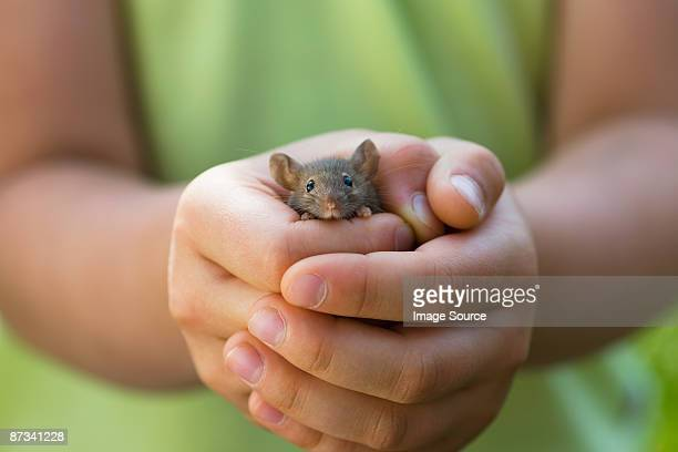 A girl holding a mouse