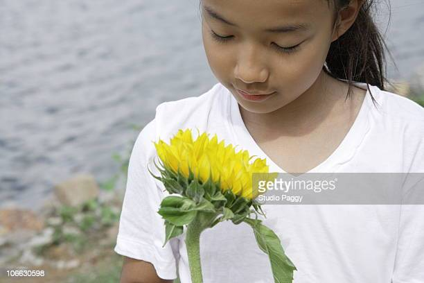 Girl holding a sunflower
