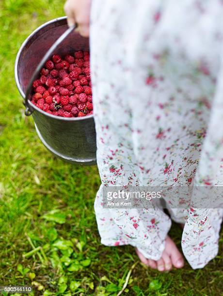 Girl holding bucket of raspberry