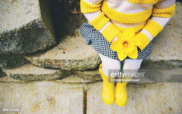 girl holding daffodil (2-3 years) - daffodils stock photos and pictures