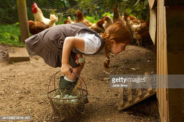 Girl (6-7) holding egg basket at hen house