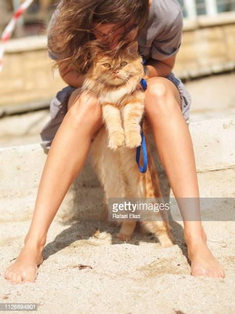 girl holding hairy cat on the beach - depilazione intima foto e immagini stock