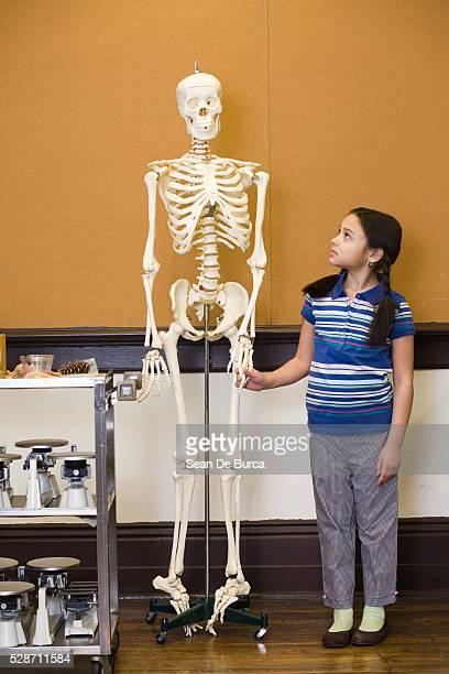 girl holding hands with skeleton - esqueleto humano fotografías e imágenes de stock