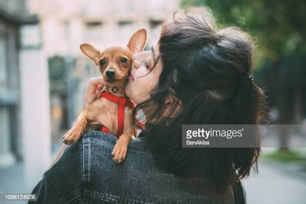 girl holding her puppy miniature pinscher - pinscher nano foto e immagini stock