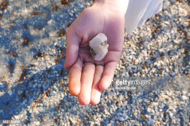 girl holding lake stone treasure, glendhu bay, lake wanaka - vinden stockfoto's en -beelden
