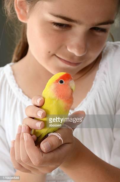 Menina segurar Lovebird