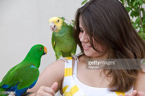 girl holding parrots - ogphoto stock photos and pictures