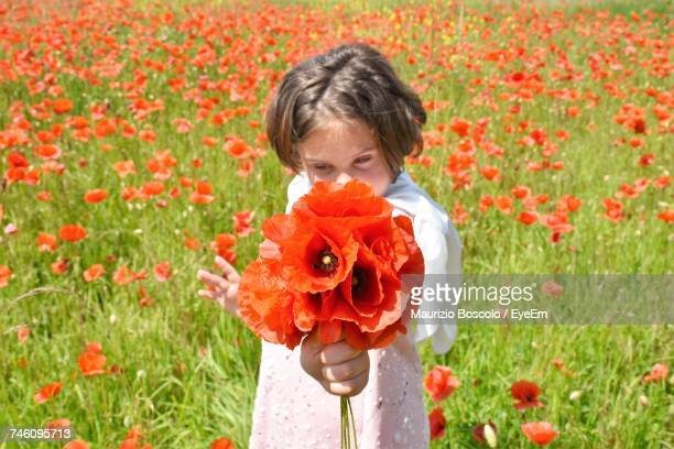 Girl Holding Poppy Flowers While Standing On Field During Sunny Day