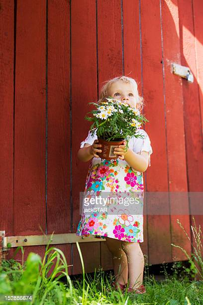 girl holding potted plant outdoors - pot plant stock pictures, royalty-free photos & images