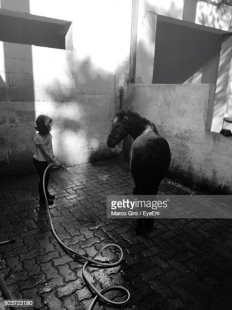 Girl Holding Water Pipe By Horse On Cobblestone