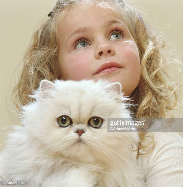 girl (4-6) holding white persian cat, close-up - persian girl stock photos and pictures