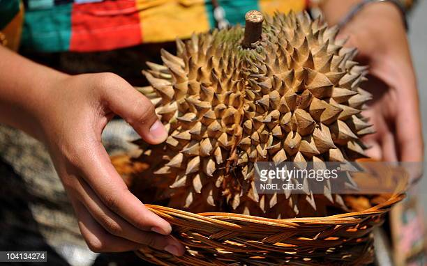 A girl holds a durian during the launching of the Sibulan hydropower plant in Davao City on the southern island of Mindanao on September 16 2010...